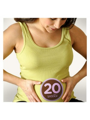 Sticky Bellies for Expectant mums - 20 weeks