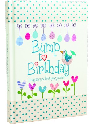 Bump to Birthday, pregnancy & first year journal front cover