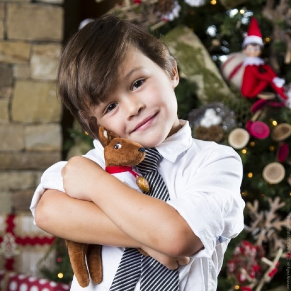 Elf Pets - Reindeer boy hugging