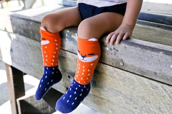 Boxed Baby Tights & Socks boxed gift set, boy wearing Fox long socks